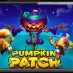 Pumpkin Patch Video Slot
