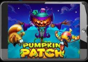 Pumpkin Patch Video Slot