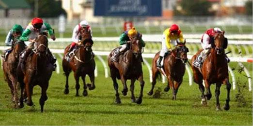 australian horse racing betting schedule 2020